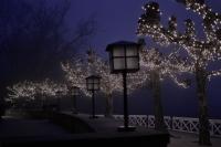 Yeni Yıl Işıkları