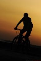 Bisikletli