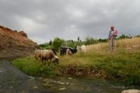 Şırnak, Kumçatı, Çoban