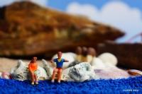 """Miniciks Hayatlar """" Deniz Kenarı """""""