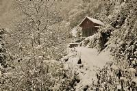 Muay01022011(kış)_2
