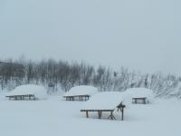 Karlar Altında
