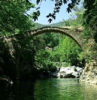 Ceneviz Köprüsü
