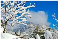 Doğada Kar...