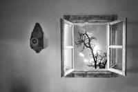 ... ::: Pencere ::: ...  - Fotoğraf: Nazım Tetik