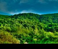 Doğayı Seviyorum...
