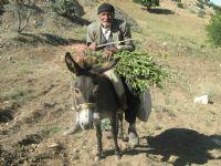 Köyümün Emekçi İnsanı