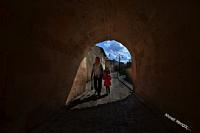Abarra - Fotoğraf: Ahmet Mengüç