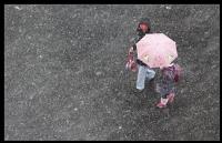 Kim Korkar Yağmurdan..