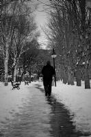 Bir Kış Gecesi Rüyası
