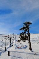 Kayak Merkezinden