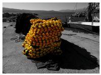 Renkler : Sarı