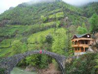 Timisvat Osmanlı Taş Kemer Köprü