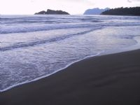 Dalyan Da Köpüklü Kıyı