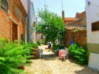 Bozcaada Sokaklarında ...