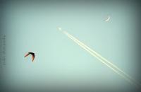 Özgürlük Gökyüzüdür