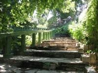 Derekahve'de Merdivenler