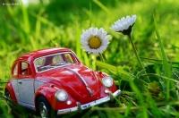 Araba Sevdası