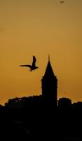 Silüet İstanbul