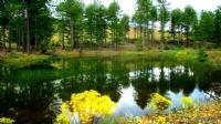 Gökçeova Gölü, Köyceğiz