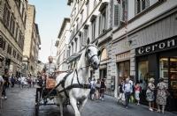 Floransa/italya