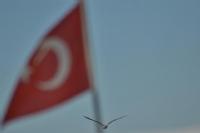 Türkbayragı