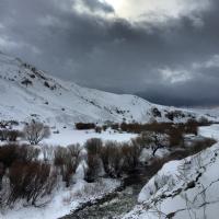 Kars Sarıkamış Doğa Manzarası