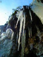 Buz Ve Yaşam