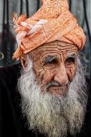 Yaşlı Çınar