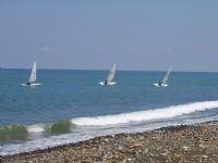 Karadeniz De Yelken