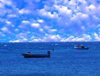 Deniz Ve Bulut
