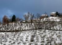 Kış 2
