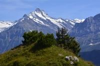 İsviçre Alplerinden Bir Parça