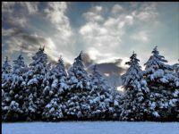 Kar Manzaraları 5