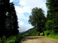 Ziganada Eski Yol