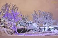 Renkli Kış