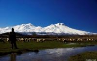 Bir Garip Çoban...