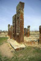Selçuklu Mezarlığı Ahlat