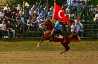 Cirit Töreni