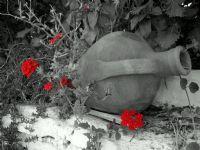Amfora Ve Kırmızı Çiçekler, Şirince