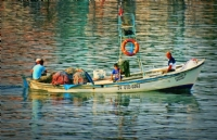 Balıkçılar