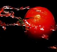...Tomato...