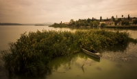 G�lyaz� - Foto�raf: Zafer Ergen