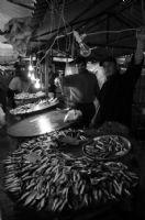 Genç Balıkçılar