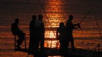 Balıkçı Muhabbeti