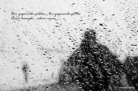 Objektife Düşen Mana  - Fotoğraf: Mustafa Balta