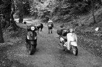 Orman Motorları