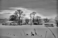 Siyah-Beyaz-K�� - Foto�raf: Nazim Zengin