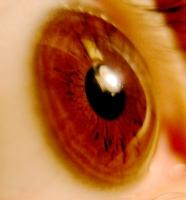 Göz Nuru
