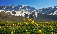 Toroslarda Bahar